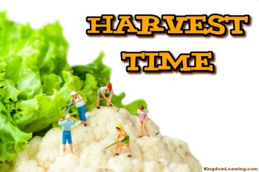 Harvest Time for the Kingdom of God