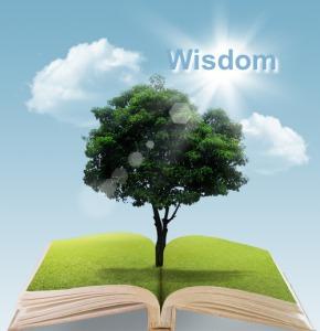Wisdom-EverestAlexander.com
